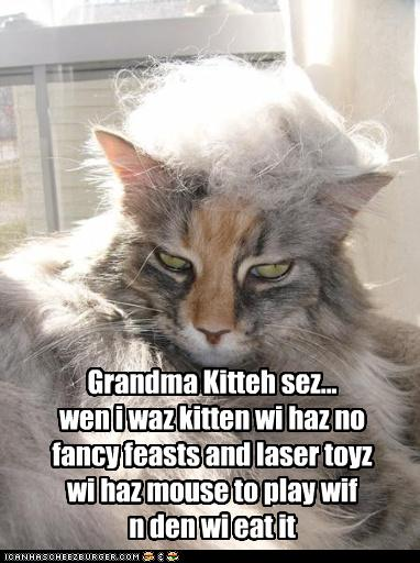 Funny Grandmother Quotes