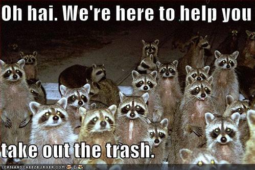 [Image: raccoons.jpg]