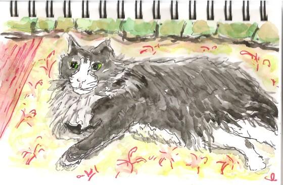 Culvey sketch2